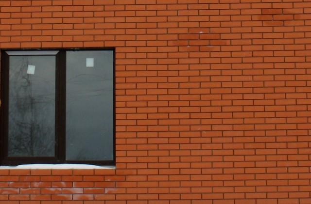 Высолы на стене кирпичного домакирпичного